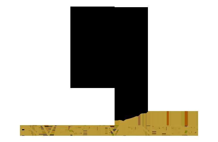 RJ Investimentos